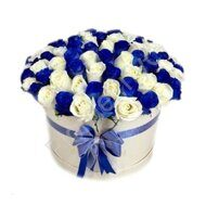 Blue and white roses in large box