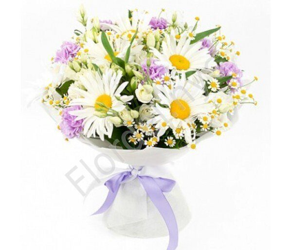 Cute bouquet of daisies