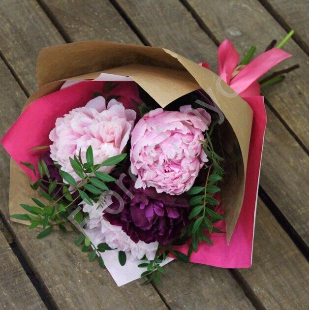 Peonies with foliages
