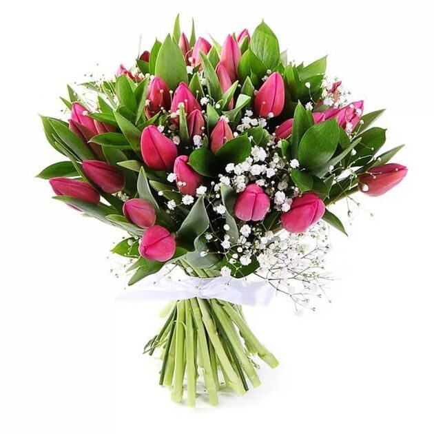 Bouquet of tulips with gypsophila