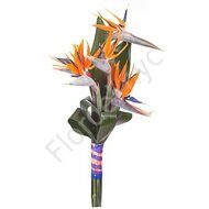Bird of paradise bouquet