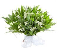 Lily of the valley and greenery