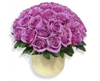 Purple rose box