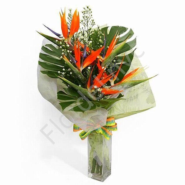 Bird of paradise Hawaiian bouquet