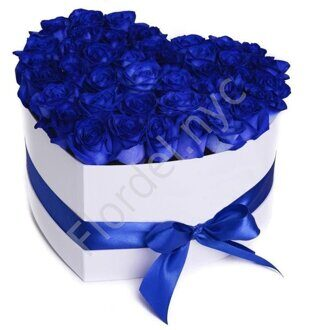 Blue rose heart