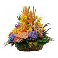 Large tropical basket