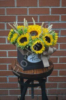 Sunflower black box