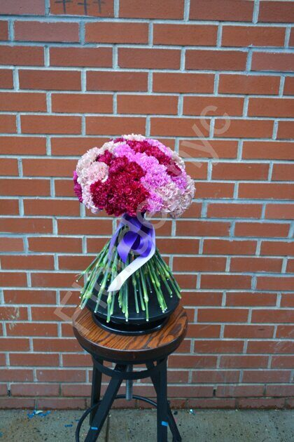 Pink-purple carnations