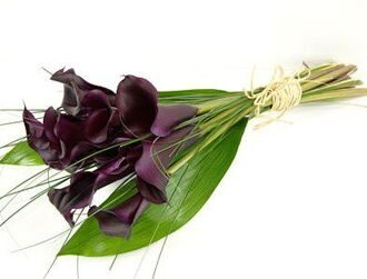 Bouquet of black callas