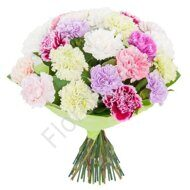Pastel colored carnations