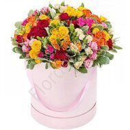 Assorted spray rose box