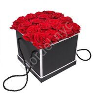Preserved rose's black box