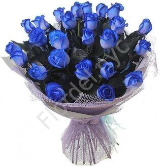 2 dozen of  blue roses