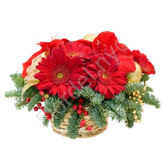 Gerbera Christmas centerpiece