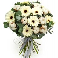 Bouquet with gerberas and cotton