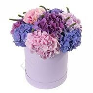 Box with hydrangea