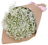 Babys breath wrapped in a paper