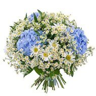 Bright daisies bouquet