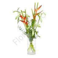 Heliconia and lilies