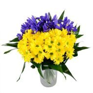 Chrysanthemums and irises