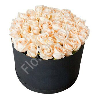 Large box of cream roses