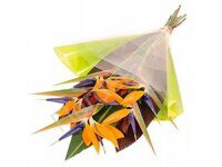 Bird of paradise simple bouquet