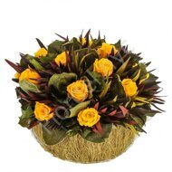 Yellow arrangement of preserved flowers