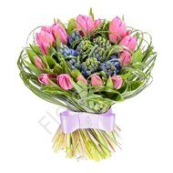 Tulips with Hyacinths