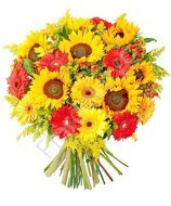 Sunflowers with gerberas