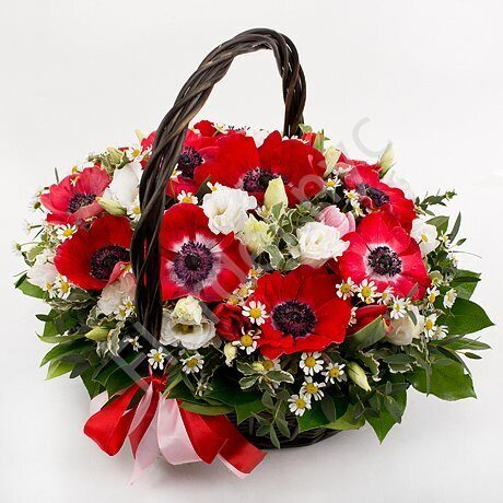 Red anemones basket