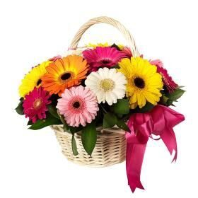 Basket of gerberas mix