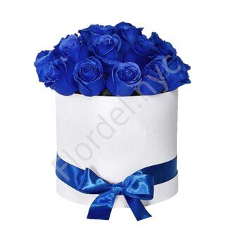2 dozen blue roses in round box