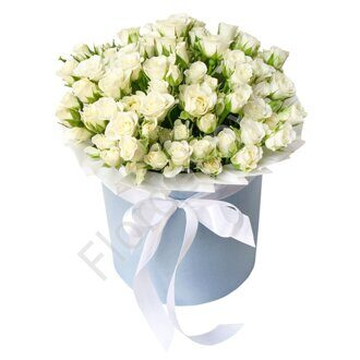 White spray rose box