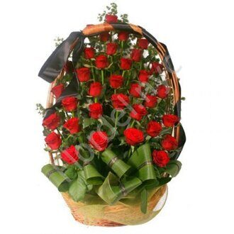 Large funeral basket of red roses