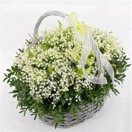Large basket of Lily of the valley