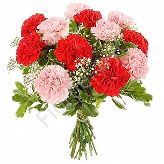 Carnations with babys breath