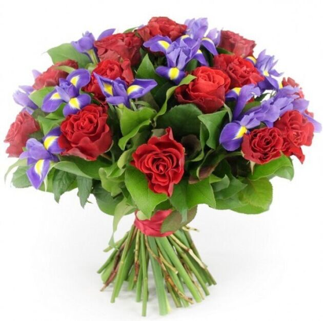 Red roses and irises