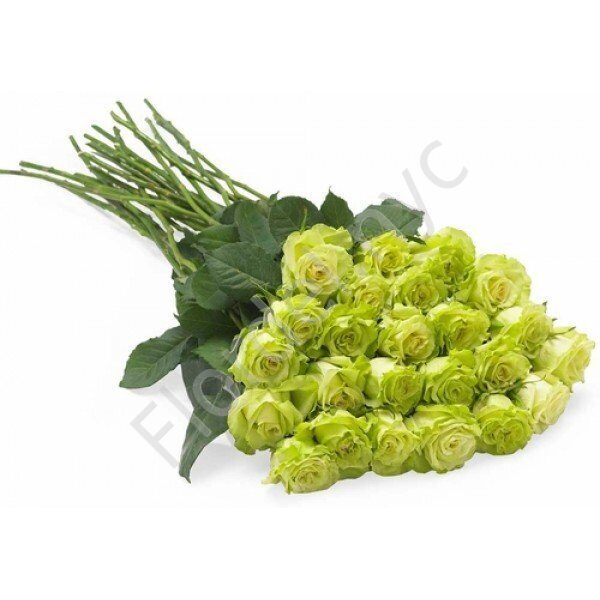 Green rose bunch