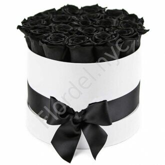 Black roses in large white box