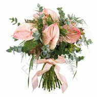 Pink anthuriums with greenery