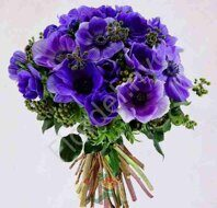 Purple anemones bouquet