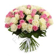 100 white and pink roses with ribbon