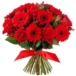 Bouquet of red gerberas and red roses