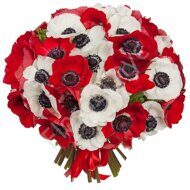 Red and white anemones bouquet