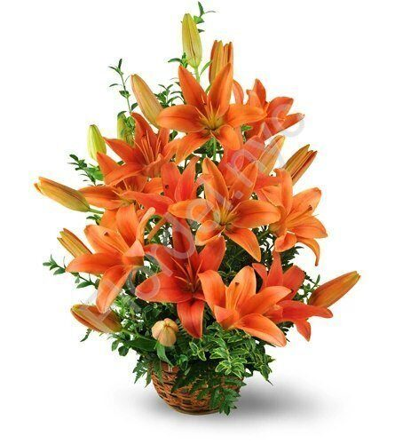 Tiger lily basket