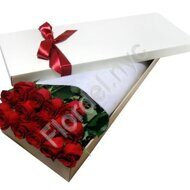 Boxed roses - 12 stems