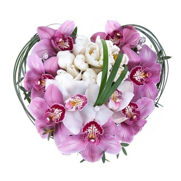 Heart of white tulips and orchids